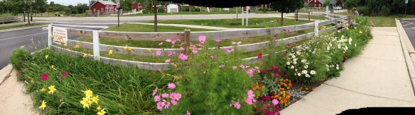The walkway across the road to the Farm and the Garden Plot